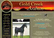 Gold Creek Arabians